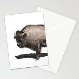 Rustic Buffalo Stationery Cards