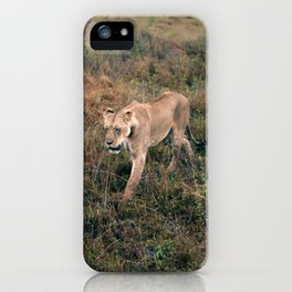 Lone Lion. iPhone Case