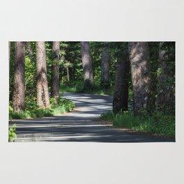 Itasca's Winding Road Rug