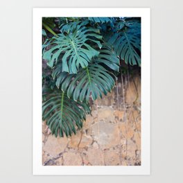Monstera Print, Tropical Green Beauty Art Print