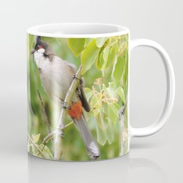Red-Whiskered Bulbul -- 2 Coffee Mug