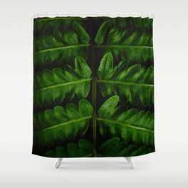 Close Up Of A Green Fern Leaf Intricate Patterns In Nature Against A Black Background Shower Curtain