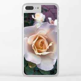 Evening Roses Clear iPhone Case