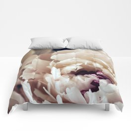 Amour Comforters