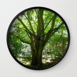 Tree of Life - Summer Wall Clock