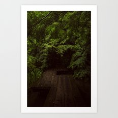 The Path Less Travelled  Art Print