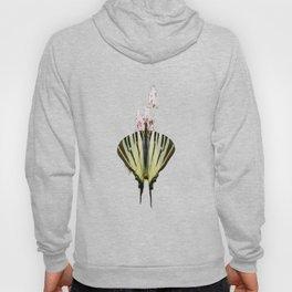 Scarce Swallowtail On Wild Garlic Flowers Vector Isolated Hoody