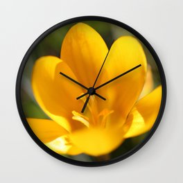 Krokusse Wall Clock