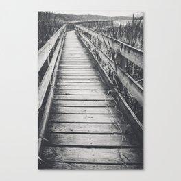 Marsh Path 3 Canvas Print