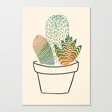 Succulent Study Canvas Print