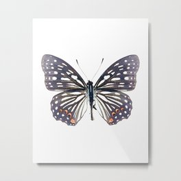 Black and White Butterfly Metal Print