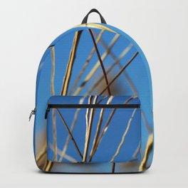 November 3 Backpack