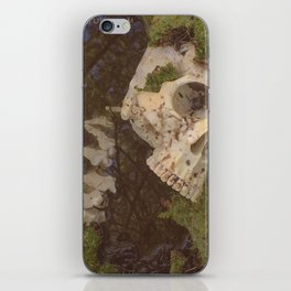 Catacomb Culture - Human Skull in Creek iPhone Skin