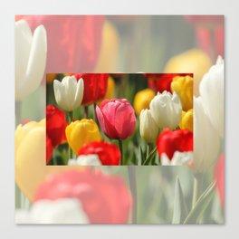 Acuarela Tulips Canvas Print