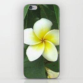 Plumeria Extreme iPhone Skin