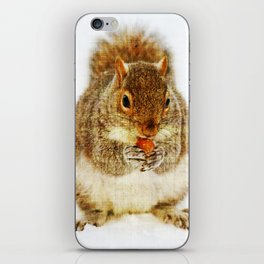 Squirrel with an Acorn iPhone Skin
