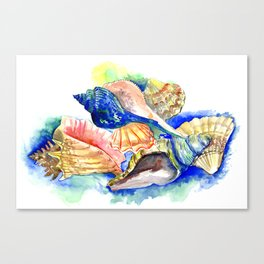 Beach design, Seashell, ocean beach seashell artwork, beach house Canvas Print