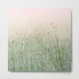 Idyllic Grass Field in the Morning Sun Metal Print
