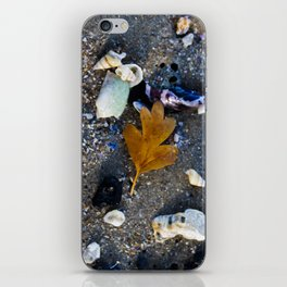 Still leaf with shells iPhone Skin