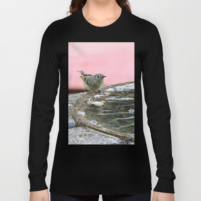 Kinglet at the Basin Rim Long Sleeve T-shirt