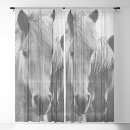 Horses - Black & White 7 Sheer Curtain