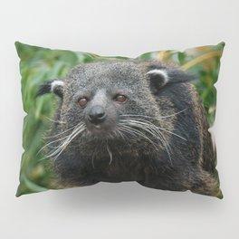 Binturong Pillow Sham
