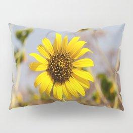 Sunflower - Bright Wildflower on a Summer Day Pillow Sham