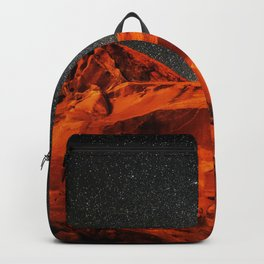 The Contrast Backpack