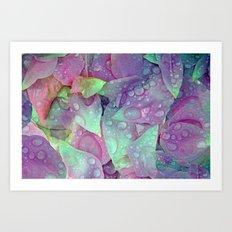 RAIN PETALS Art Print