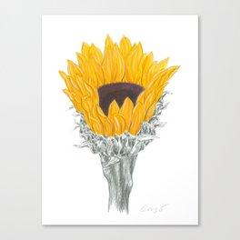 Sunflower 01 Botanical Flower Canvas Print