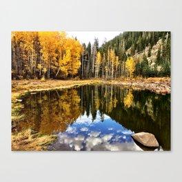 : grand fall : Canvas Print
