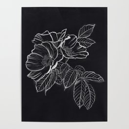 Chalked Roses - Black and White Modern Florals Poster