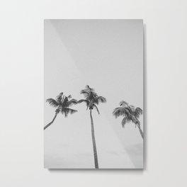 PALM TREES XVIII Metal Print