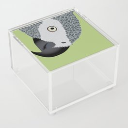 African Grey Parrot [ON MOSS GREEN] Acrylic Box