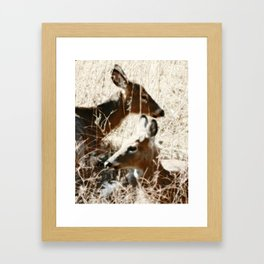 Doe And Her Young Framed Art Print