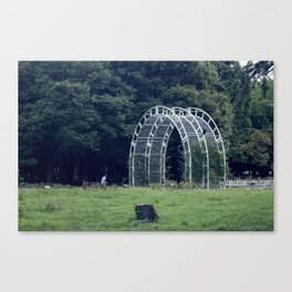 give me shelter Canvas Print