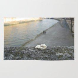 gum, Paris Rug