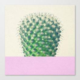 Cactus Dip II Canvas Print