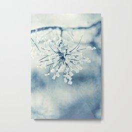 Frosty Metal Print