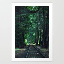 Train Rails in the Forest Art Print