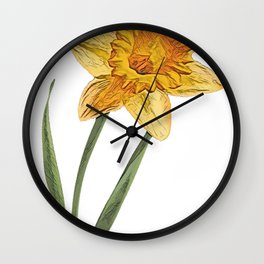 Daffodil Narcissus perennial amaryllis jonquil tepals cup Wall Clock