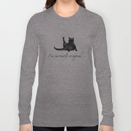 I'm currently occupied Long Sleeve T-shirt