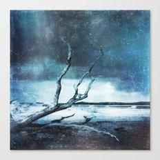 A Winter Dream Canvas Print