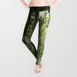 Shinrin-Yoku I Leggings
