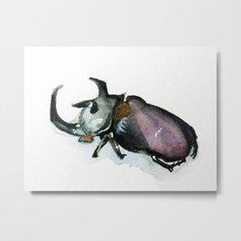 Rhinoceros Beetle Watercolor Metal Print