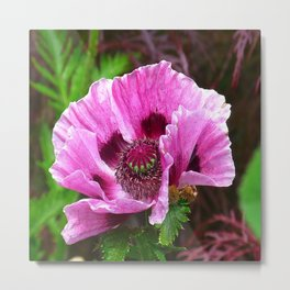 dreamlike pink bloom Metal Print