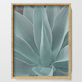 Azul Succulent Agave Plant Serving Tray