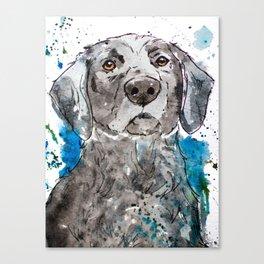 Black Lab Water Dog Artwork Canvas Print