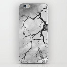 096 | bastrop state park iPhone Skin
