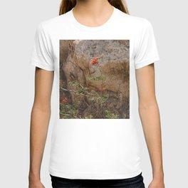 Mexico Mountain Flower T-shirt